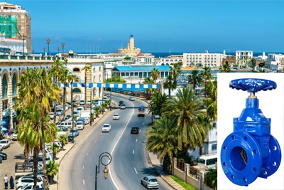 flow control valve Exporter in Algeria
