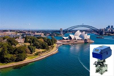 Triple Offset Valve suppler & exporter in Australia