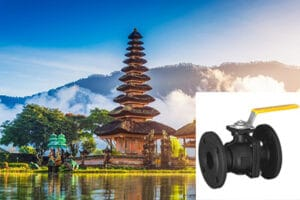 Globe valve exporter in Indonesia - Quality Pressure reducing valves